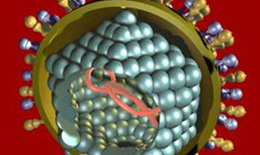 Phương pháp điều trị bệnh viêm gan A