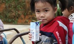 Sữa học đường: Cần kiểm soát tiêu chuẩn