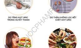 Đẩy lùi bệnh Gout (Gút) theo đông y an toàn