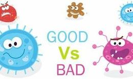"""Tại sao nói """"Bào tử lợi khuẩn sống là cách mạng giải quyết bệnh đường tiêu hoá""""?"""