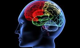 Xóa tan nỗi lo di chứng não, giúp phục hồi chức năng não bộ nhanh và hiệu quả nhất