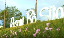 Resort bò sữa Vinamilk - Điểm check-in hấp dẫn mới ở Tây Ninh