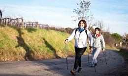 Người thoái hóa khớp gối cần đi bộ như thế nào?