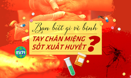 Nhận biết và phân biệt sớm bệnh sốt xuất huyết - tay chân miệng