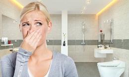 Cách khử mùi hôi nhà vệ sinh hiệu quả