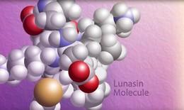 """Hội thảo khoa học """"Công bố kết quả nghiên cứu về hoạt chất Lunasin chiết xuất từ Soy Protein hỗ trợ đẩy lùi ung thư Phổi"""""""
