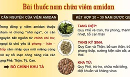 Chữa viêm amidan bằng bài thuốc thảo dược tại Trung tâm Đông y Việt Nam