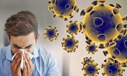 Tăng cường sức đề kháng, hỗ trợ phòng bệnh trong mùa dịch