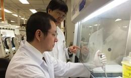 Nóng: Các nhà khoa học đã tìm ra phương pháp điều trị MERS