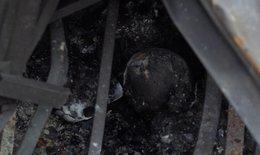 Bé sinh non, suy hô hấp điều trị tại BV Nhi TƯ có thể là con của 2 nạn nhân trong vụ cháy ở Đê La Thành