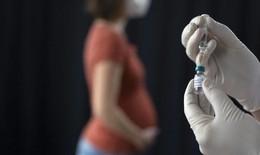 Nghiên cứu vaccine COVID-19 ở phụ nữ mang thai và cho con bú