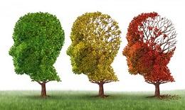 Yếu tố nguy cơ làm tăng mắc bệnh Alzheimer