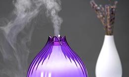 Chuyên gia Dược học: Tinh dầu không hoàn toàn vô hại như bạn nghĩ