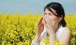 10 cách giúp bạn hạn chế tình trạng dị ứng vào mùa xuân