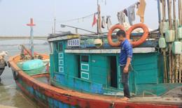 Tuần này, duyệt định mức tiền đền bù cho ngư dân 4 tỉnh miền Trung bị ảnh hưởng bởi sự cố Formosa