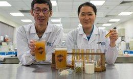 Nghiên cứu loại bia probiotic mới làm tăng khả năng miễn dịch
