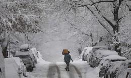 Người dân Mỹ khốn khổ vì bão tuyết