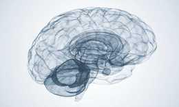 Sau COVID-19 có thể đến đại dịch sức khỏe tâm thần