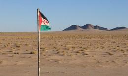 Việt Nam kêu gọi các bên tại Tây Sahara sớm quay lại đàm phán với vai trò trung gian của LHQ