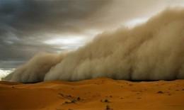 Bụi Sahara có thể làm trầm trọng thêm bệnh dị ứng