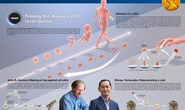 4 người Nhật giành giải Nobel ở lĩnh vực y học