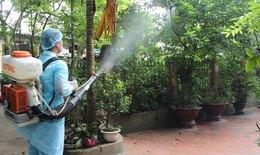 Tăng cường phòng, chống dịch sốt xuất huyết, sởi và bệnh dịch tả lợn châu Phi