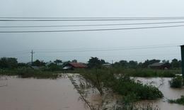 Đắk Lắk: Mưa lớn gần 800 ngôi nhà bị ngập, 1 người chết