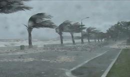 Tối nay bão số 5 đổ bộ Miền trung, gió giật cấp 11