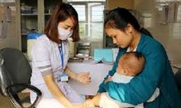 Hà Nội tăng cường công tác phòng chống bệnh viêm não Nhật Bản