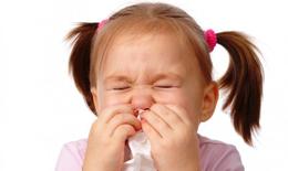 Cảnh báo: Viêm mũi dị ứng ở trẻ ngày càng nghiêm trọng