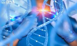 Tế bào gốc - Giải pháp bền vững giúp ngăn ngừa sự tiến triển của thoái hóa khớp