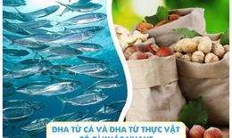 Sự khác biệt lớn giữa DHA từ cá và DHA từ thực vật