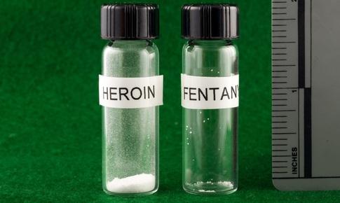 Gia tăng đáng báo động thuốc giả có chứa fentanyl giảm đau