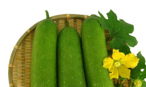 Bí đao – món ăn thanh phế mát vị, tốt cho người bệnh COVID