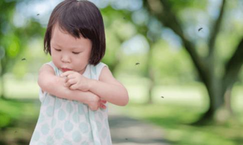 Trẻ mắc sốt xuất huyết: Những lưu ý trong điều trị, chăm sóc