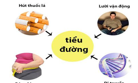 Đông y hỗ trợ điều trị đái tháo đường