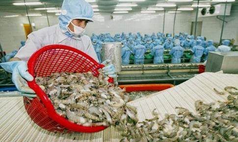 Tác động của Hiệp định Thương mại Tự do Việt Nam-EU (EVFTA) đối với sự phát triển bền vững ngành thủy sản