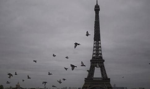 Pháp vượt mốc 2 triệu ca mắc COVID-19