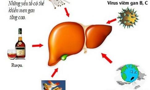 7 biện pháp tự nhiên để giảm men gan