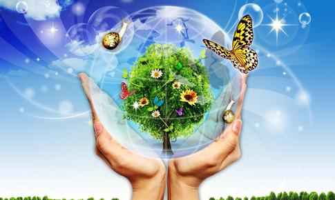 Bảo vệ môi trường sống giúp ngừa bệnh trọng