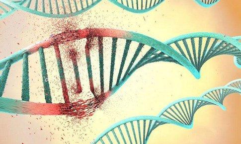 Chuyên gia nói gì về đột biến mất xít amin ở biến thể có nguồn gốc Ấn Độ