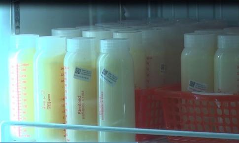 Hơn 2.000 lít sữa mẹ được hiến tặng cho ngân hàng