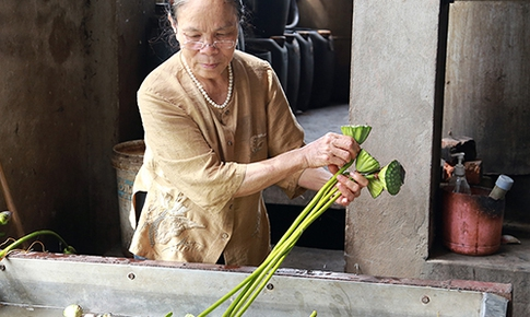 Gặp người dệt lụa tơ sen đầu tiên ở Việt Nam